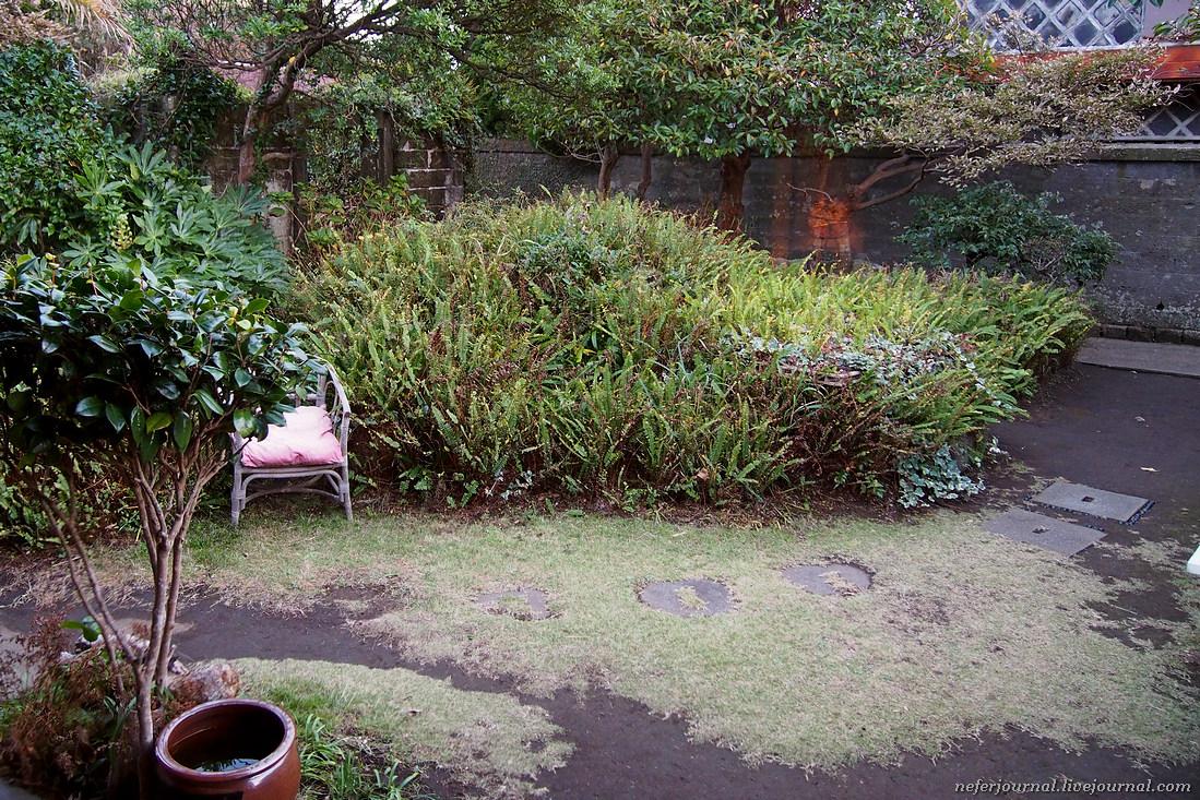 Из окна открывается вид на сад.