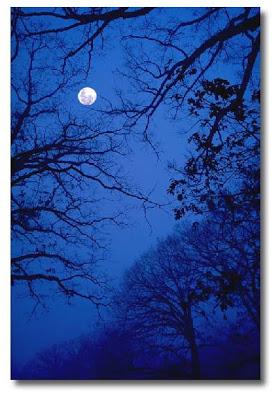 شب آبی.jpg