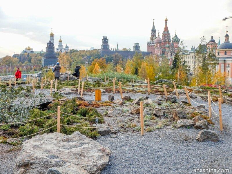 """Парковая ландшафтная зона «Северные ландшафты», парк """"Зарядье"""", Москва"""