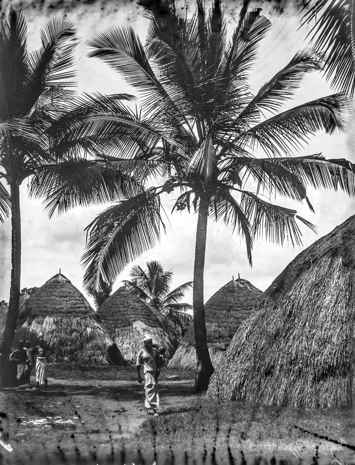 110. Деревня васигуа с соломенными крышами