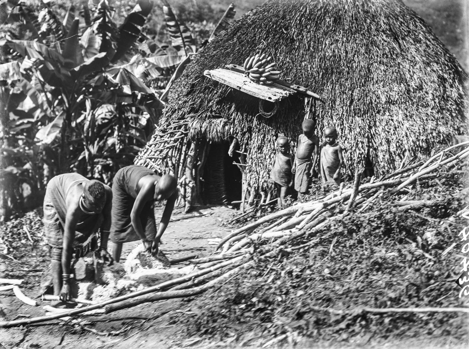 147. Две женщины варе, подготавливают сахарный тростник для производства помбе