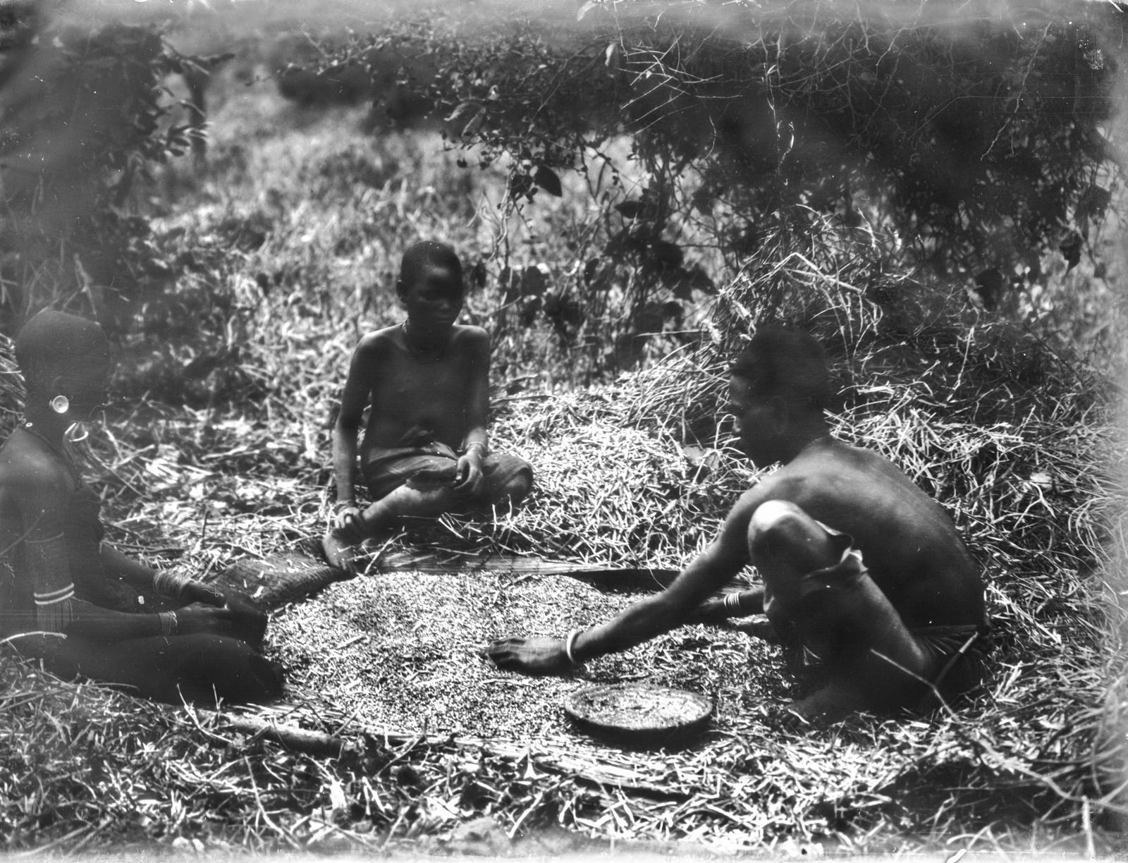 150. Женщина и двое мужчин народности паре во время переборки гороха