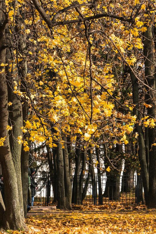 Коломенское. Золотая осень 2017.