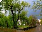 Первомайский дождь.  Фото сделано в Крыму 1 мая в г.Симферополе. город.