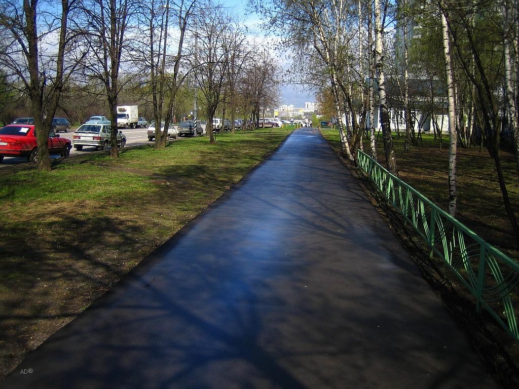 Москва_апрель-2008