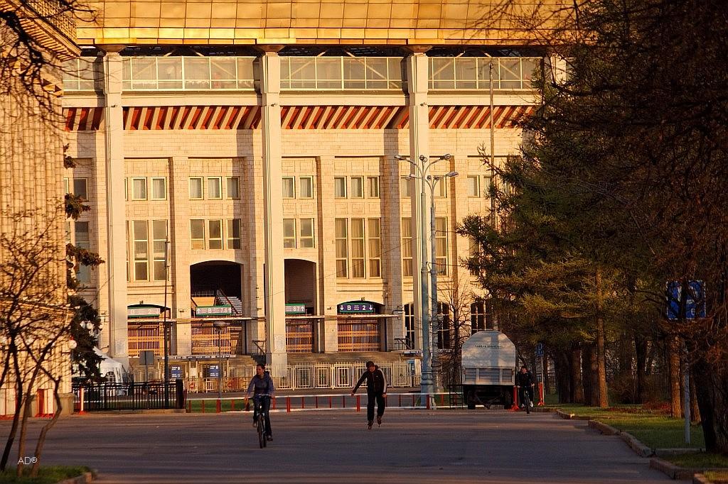 Большая спортивная арена Олимпийского комплекса «Лужники»