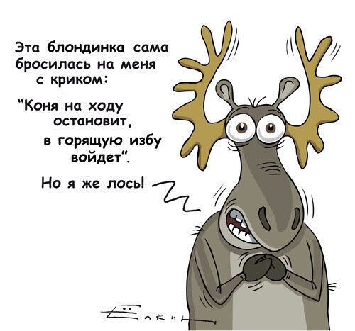 Лося Видео Анекдоты