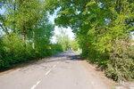 Дорога в парк.jpg