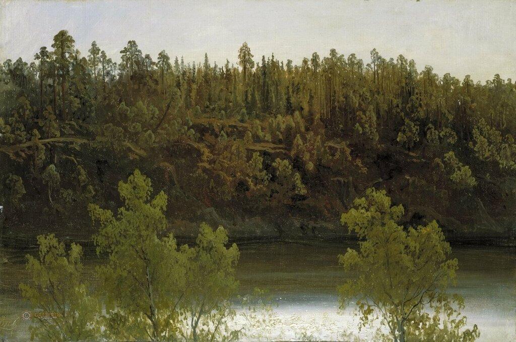 Шведское озеро. Этюд