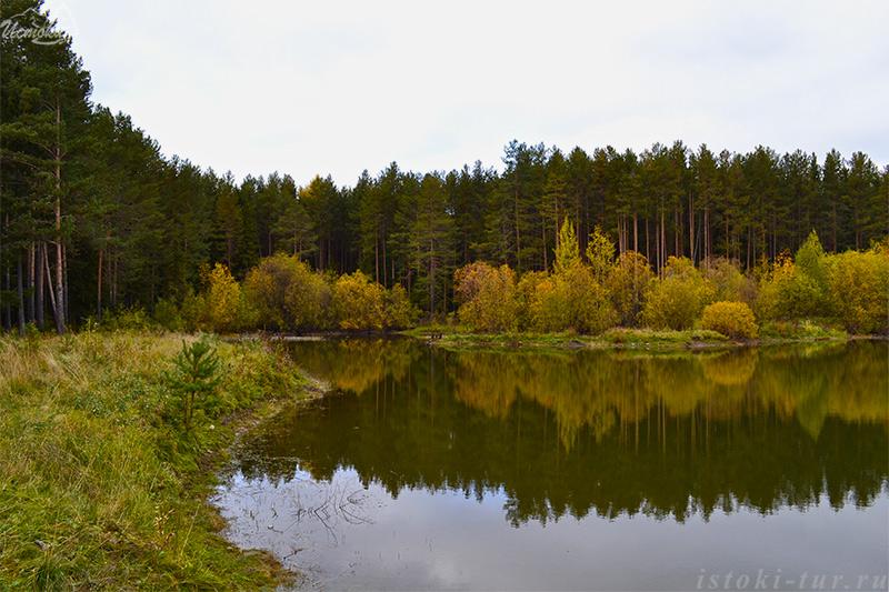 водоём_в_лесу_vodoem_v_lesu