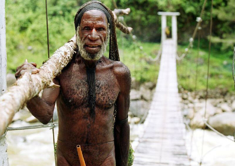Yali_man_Baliem_Valley_Papua.jpg