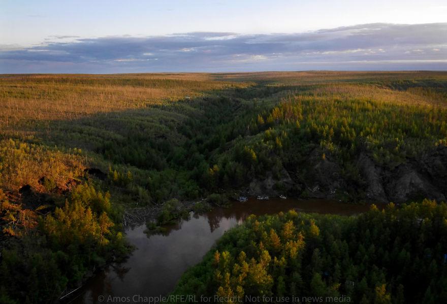 Один палеонтолог сказал мне, что когда-то здесь, скорее всего было болото — в нем и утонули доистори