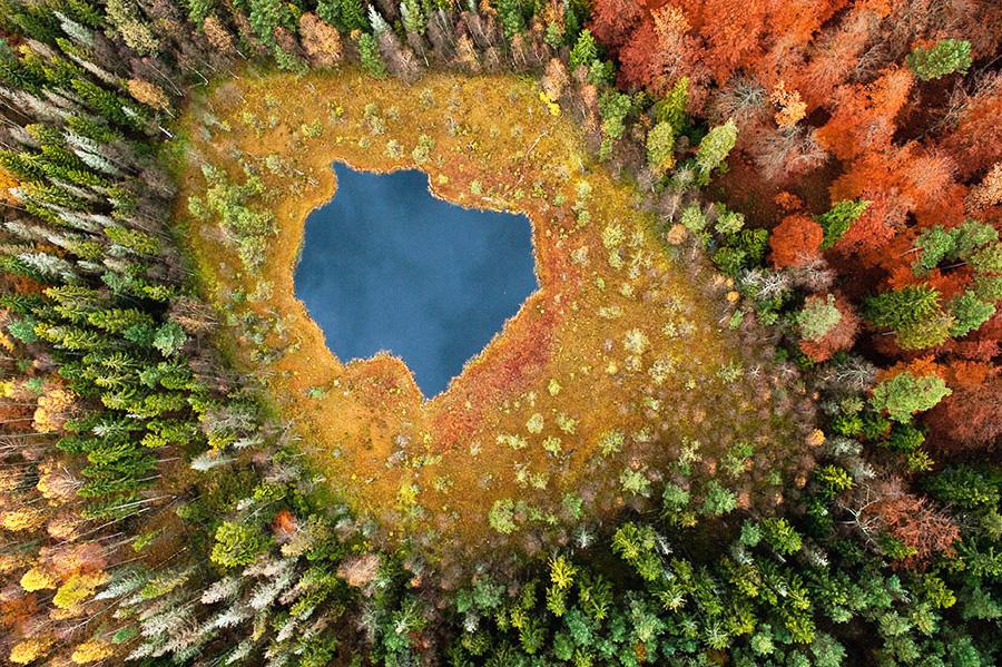 © kacperkowalski    Национальный парк Хитачи, Япония