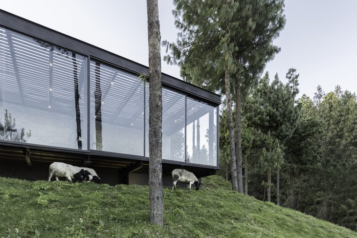 The High Plain House by Andres Argudo
