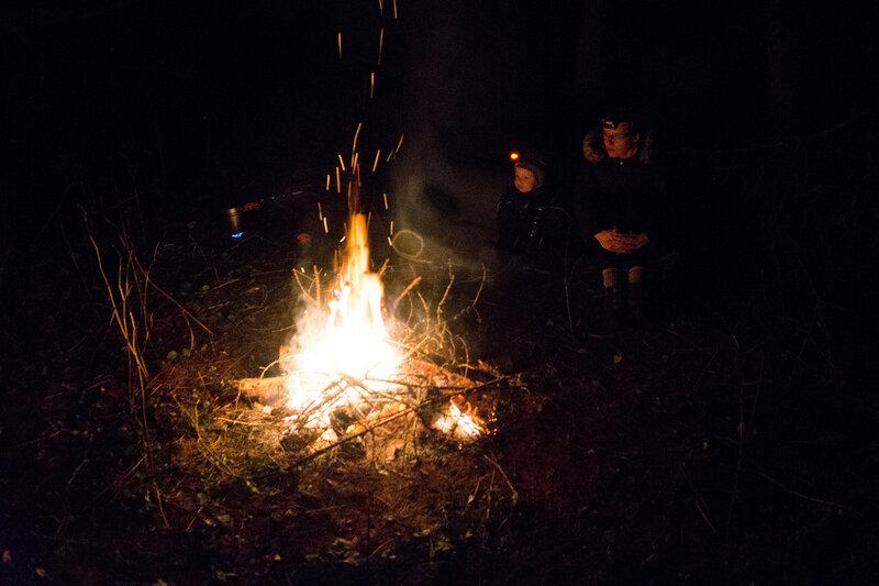 вечер у костра в походе в лес с ребенком в ноябре