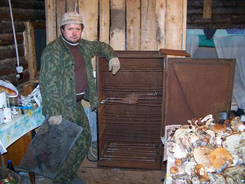 Сушилка для грибов промышленная своими руками