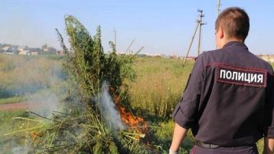 В Боровском районе полицией проводится оперативно-профилактическая операция «Мак»