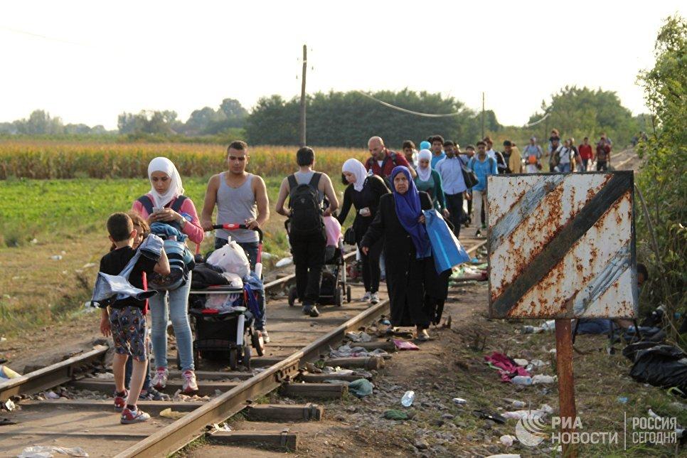 Беженцы у сербско-венгерской границы в районе поселка Реске. Архивное фото