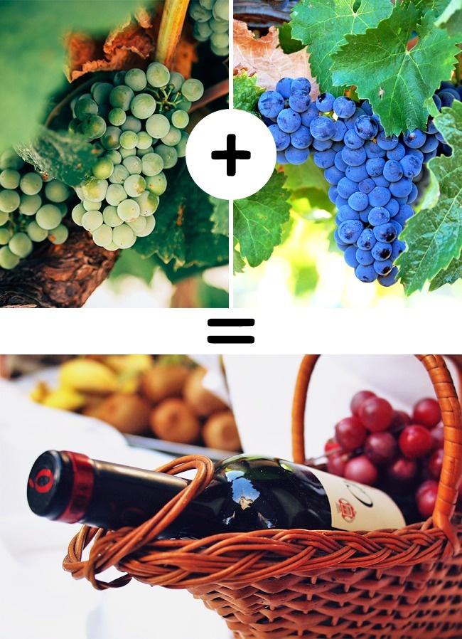 © pixabay  © pixabay  © pixabay  Бытует мнение, что вино изодного сорта винограда