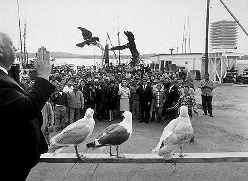 24. «Птицы», 1963 год.