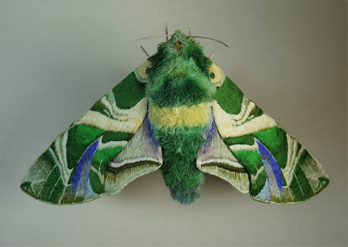 Large New Embroidered Textile Moths and Cicadas by Yumi Okita (10 pics)