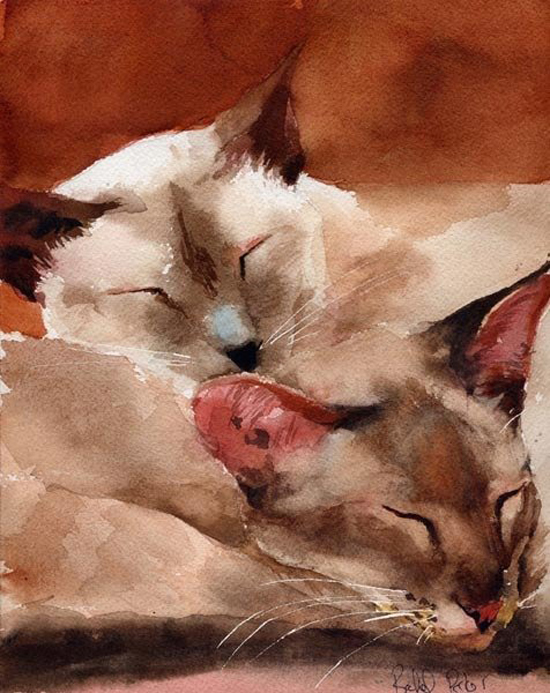Siamese-watercolor-by-Rachel-Parker13.jpg