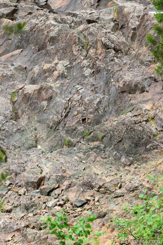 Древняя лава, вулкан Гирвас, Карелия