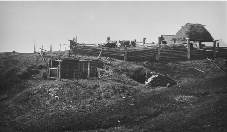 Нарым.  Ограждения для скота, «Камчатка» и жилой дом