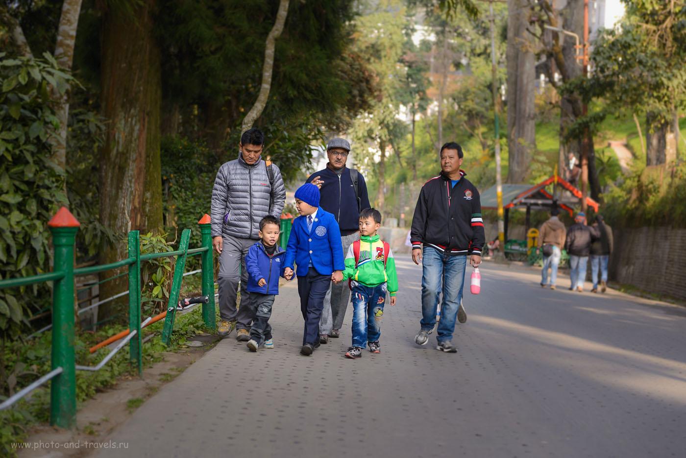 Фотография 4. Прогулка по улицам Дарджилинга. В зоопарк мы пошли рано утром, навстречу встретили множество индийских школьников. Фотоаппарат Никон Д610, объектив Никон 24-70/2,8. Параметры съемки: 1/250, 2.8, 160, 70.