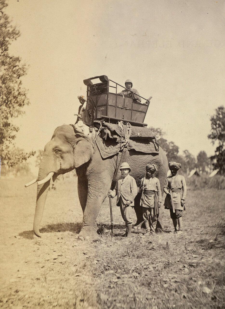 123. Принц Уэльский на слоне