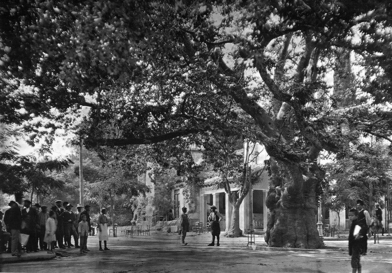1920. Кифисия