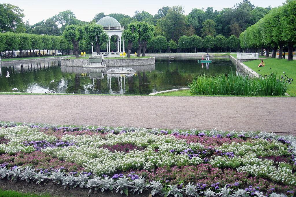 берегах парки в таллине с фотографиями крылья лебеди