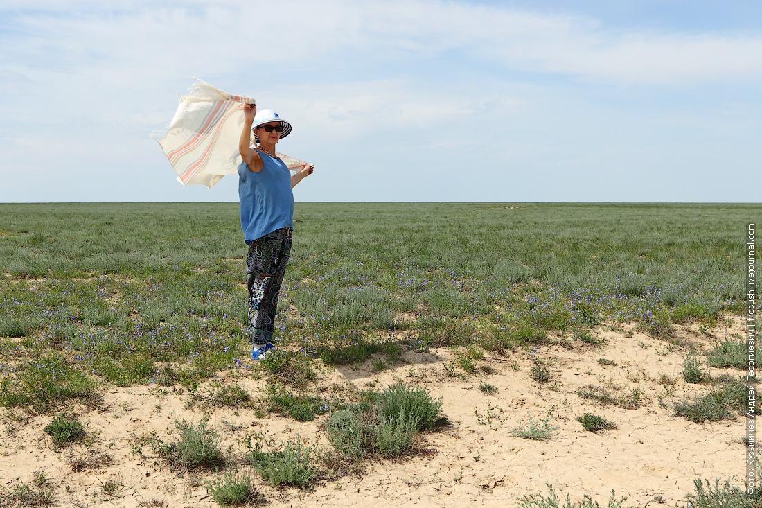 фотография в казахской степи
