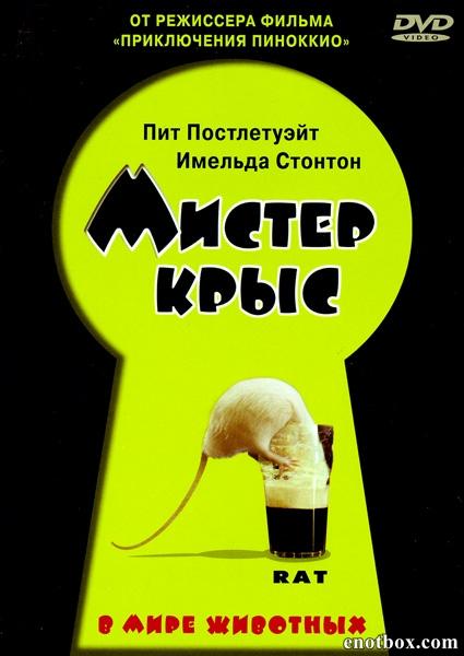 Мистер крыс / Rat (2000/DVDRip)