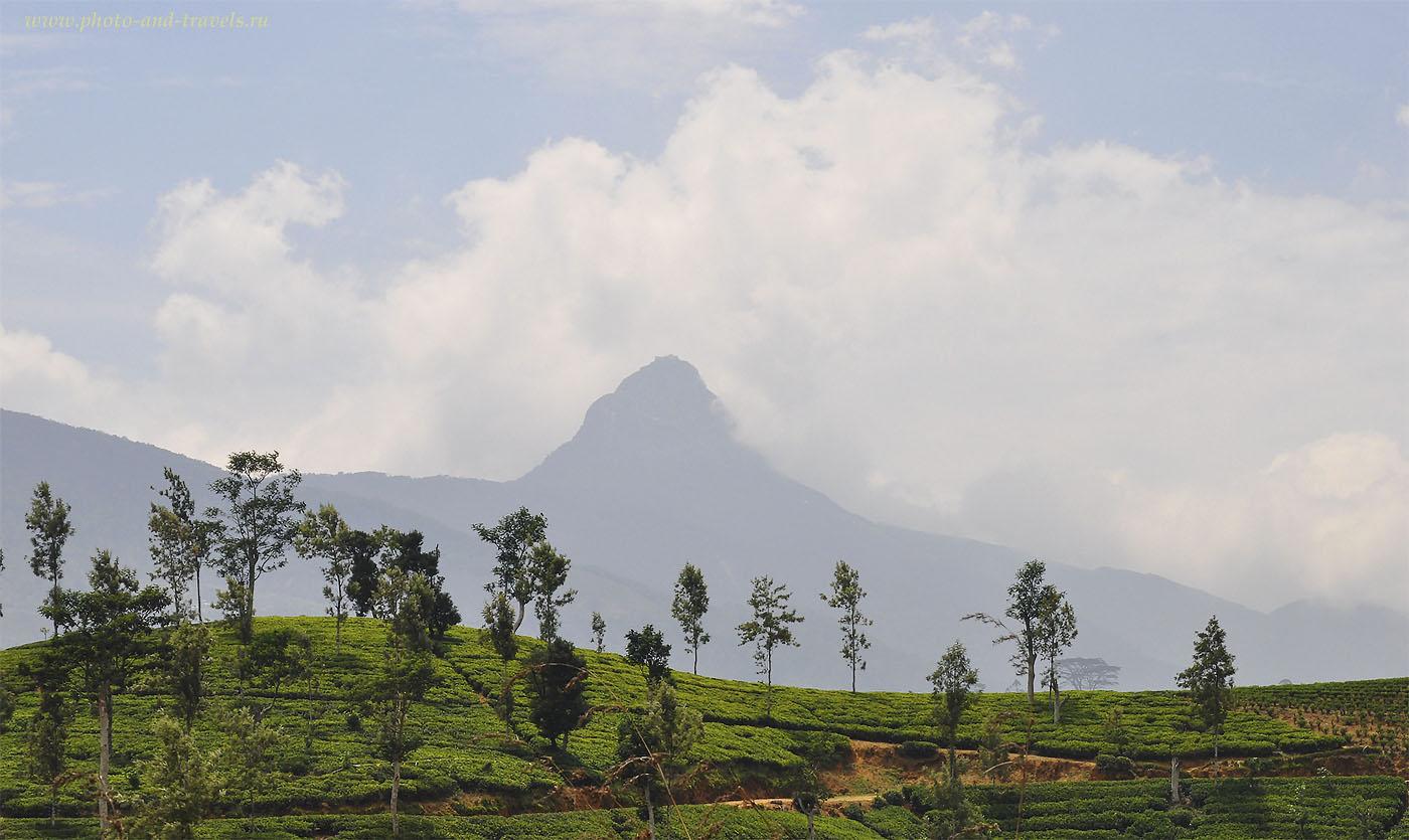 Фото 1. Пик Адама - священная гора для буддистов Шри-Ланки. Включите ее в список достопримечательностей, которые нужно посмотреть во время своего тура?