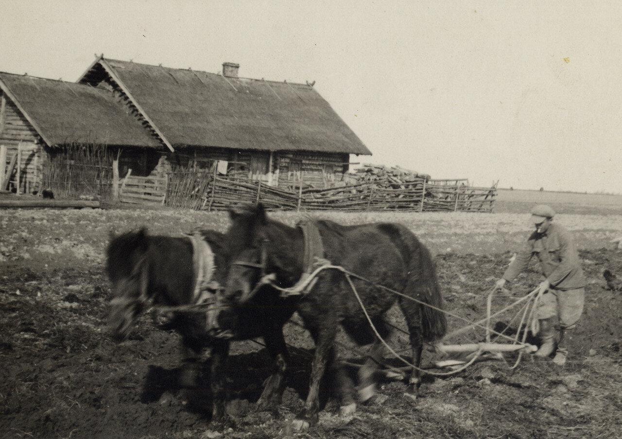Хутор. Освоение земли.1936 год. Фото Семак Франца