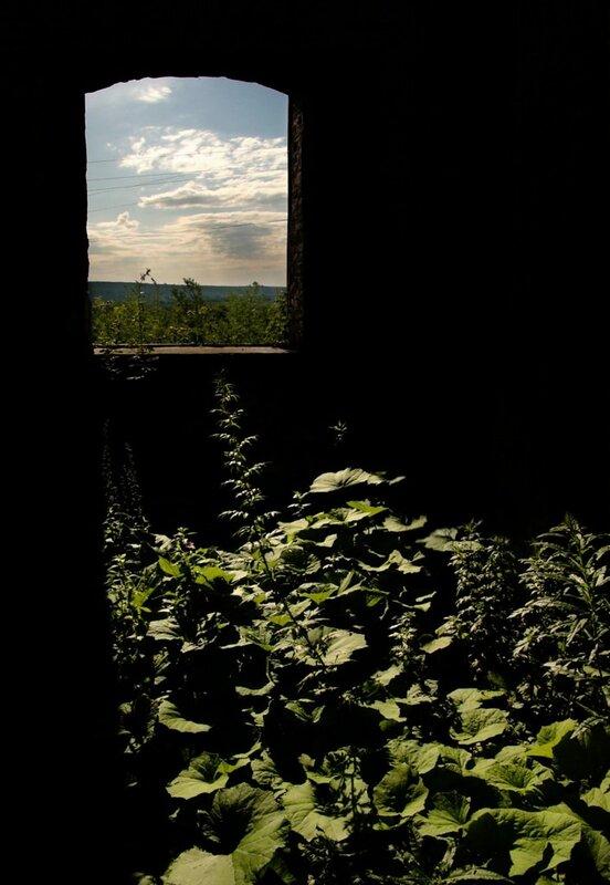 Фотографии природы и пейзажа. Блог фотографа Кузьмина