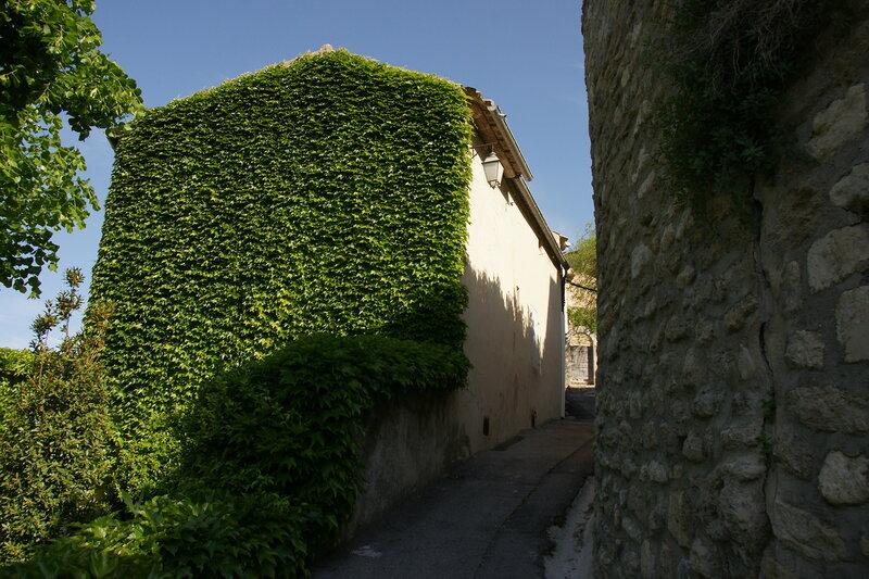 г. Менерб (Ménerbes), Прованс, Франция, май 09