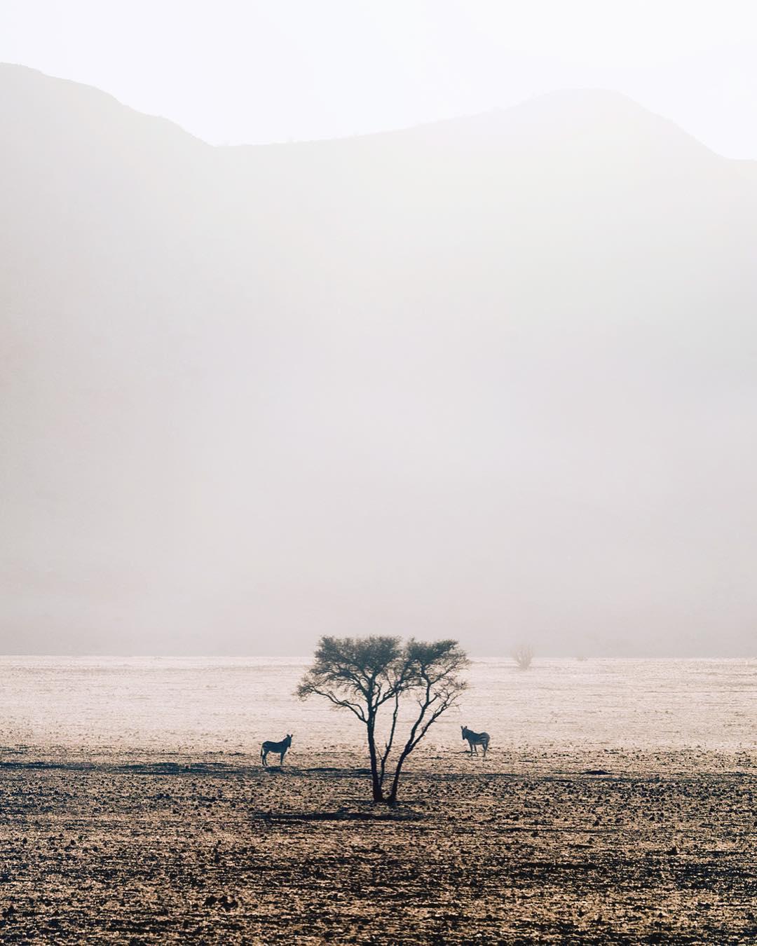 Путешествия и приключения на снимках Тобиаса Майера