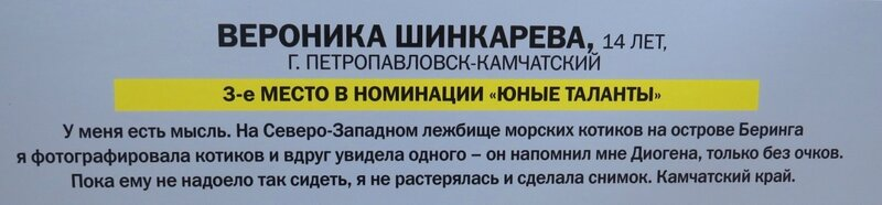 https://img-fotki.yandex.ru/get/370744/140132613.6a6/0_240b00_87d3ca8d_XL.jpg