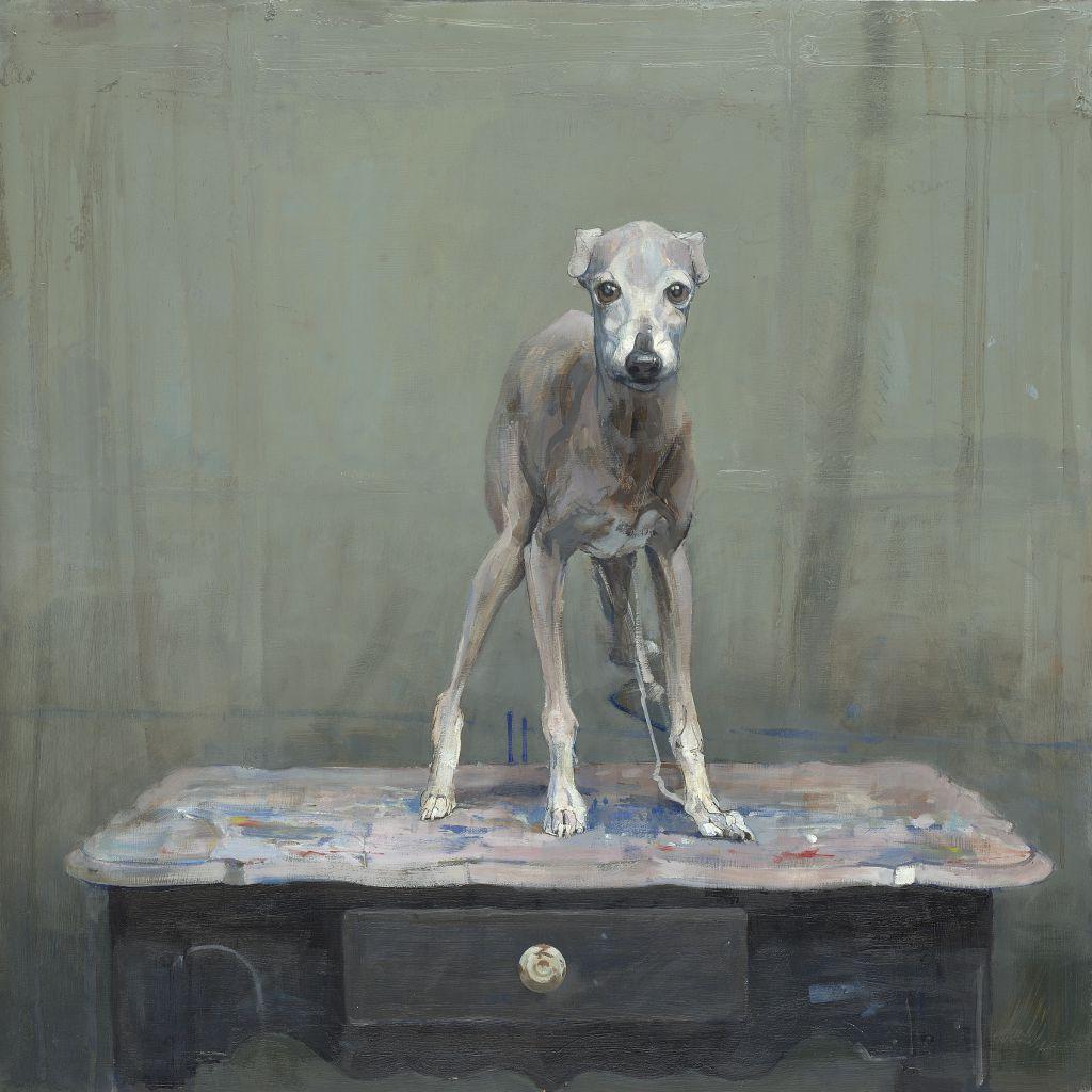 Собаки / Рисунки Pieter Pander