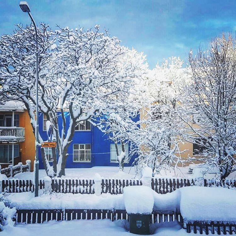 Главная исландская новость: в Рейкьявике выпало более 50 см снега