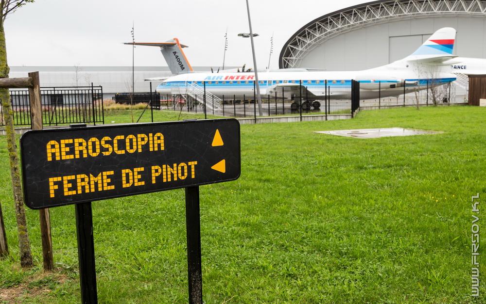 Aeroscopia (71).jpg