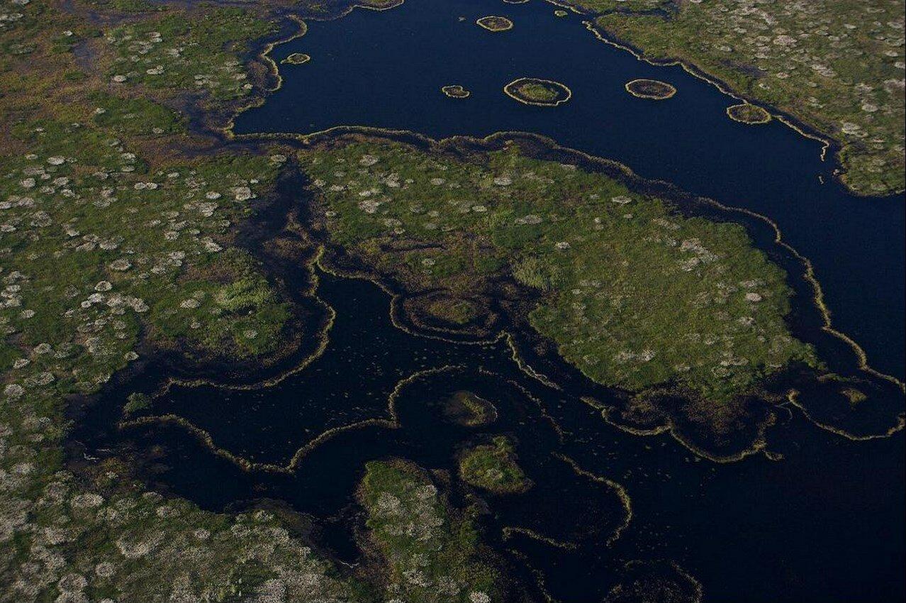 20. Водно-болотистая местность вблизи Сургута