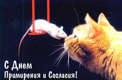 С днем примирения и согласия. Кошка с мышкой