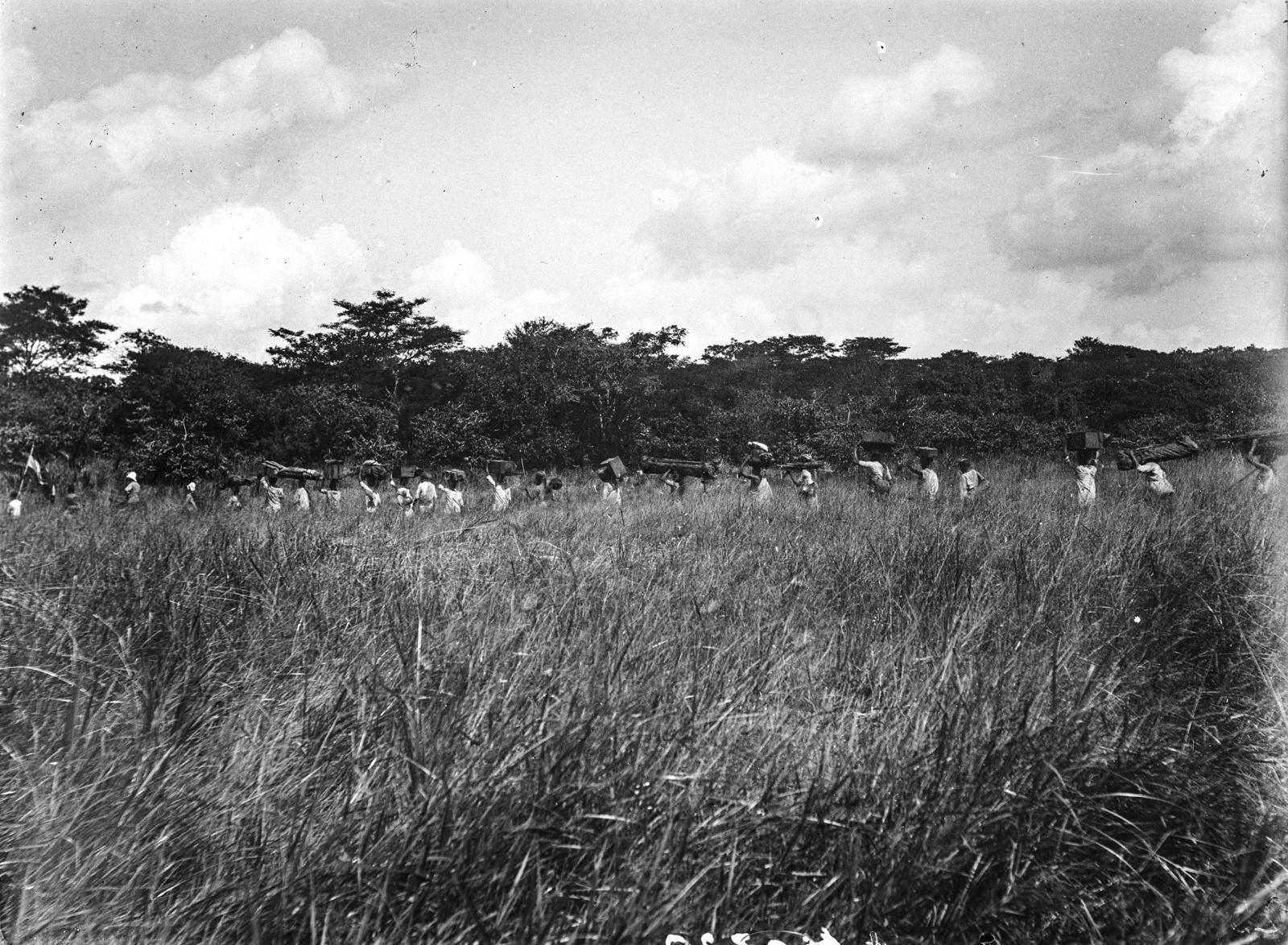 37. Экспедиция пробирается сквозь высокой траве