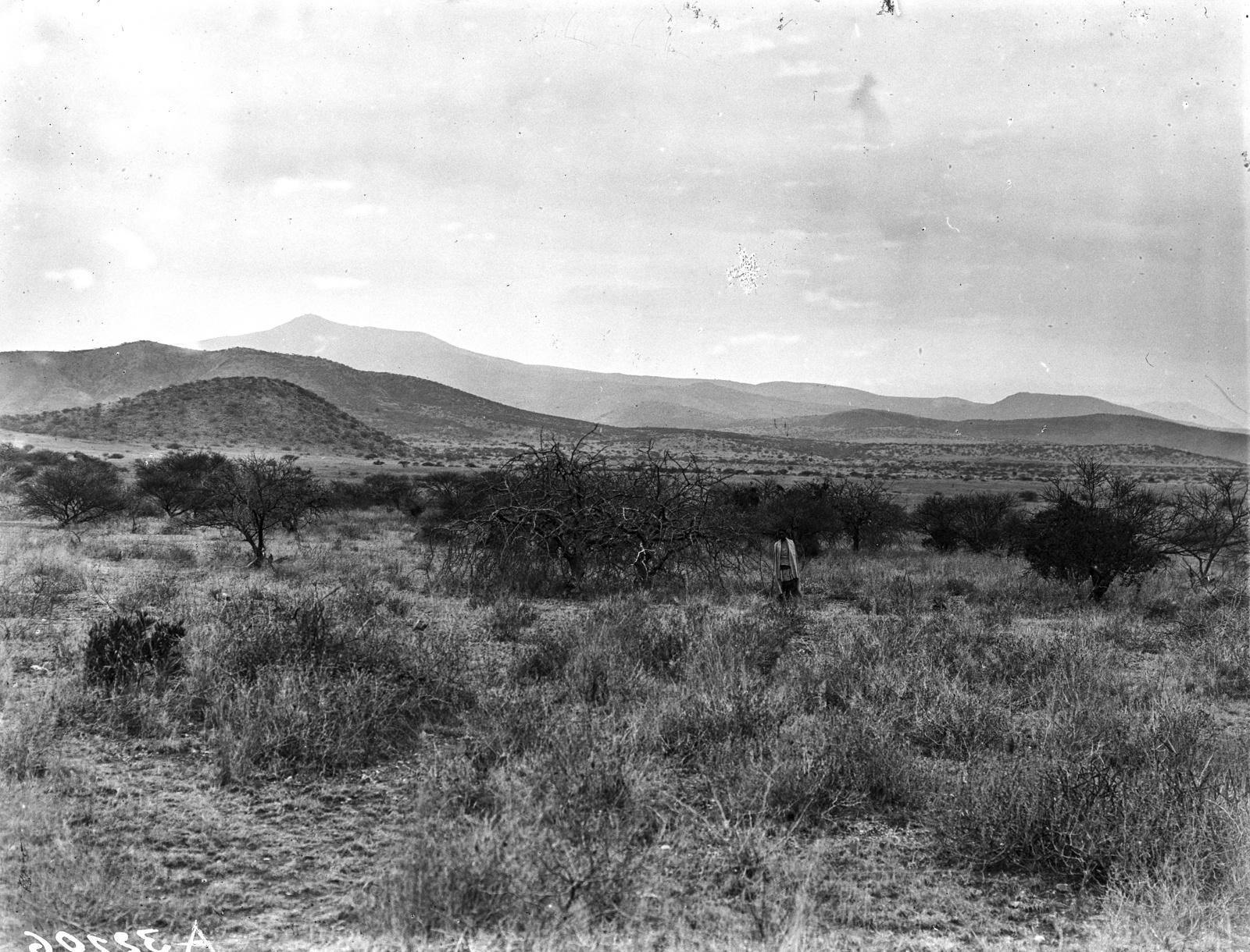 45. Саванна перед вулканом Таросеро