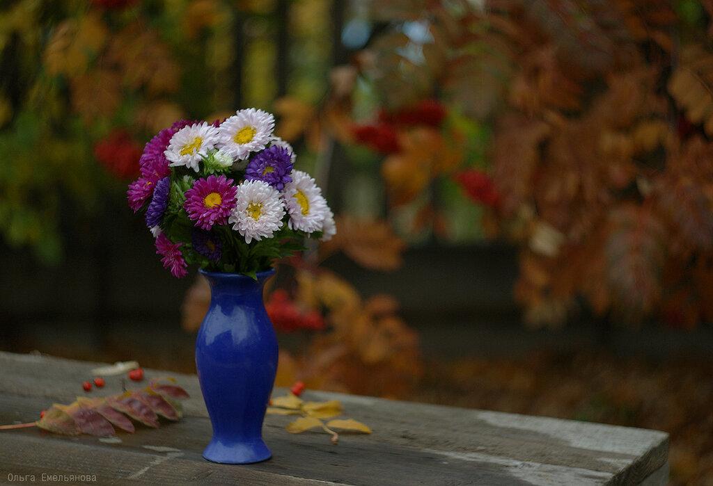 Яркий октябрь