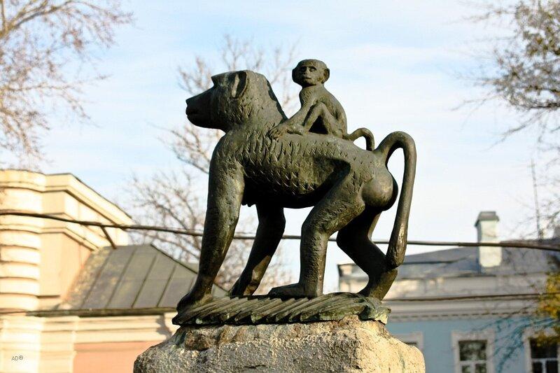 Зоопарк 2008