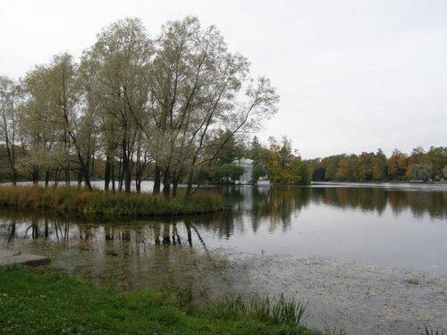Большой Царскосельский пруд